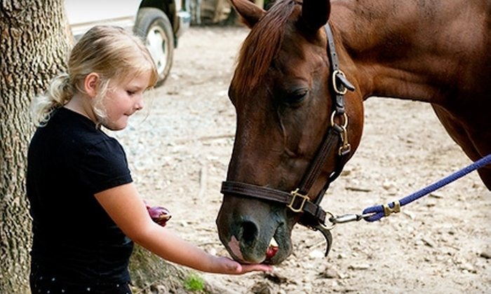 Dead Broke Farm - Raleigh: Horseback Riding Day Camp or Parent-and-Camper Trail Ride at Dead Broke Farm