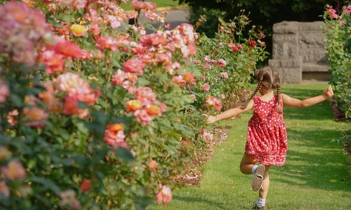 Portland Walking Tours: $6 for a Roses Gone Wild Tour from Portland Walking Tours ($12 Value)