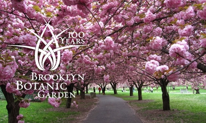 Brooklyn Botanic Garden   New York: One Year Membership At Brooklyn Botanic  Garden.