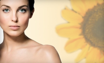 $20 Groupon to Sunflower Health Foods - Sunflower Health foods in Gainesville