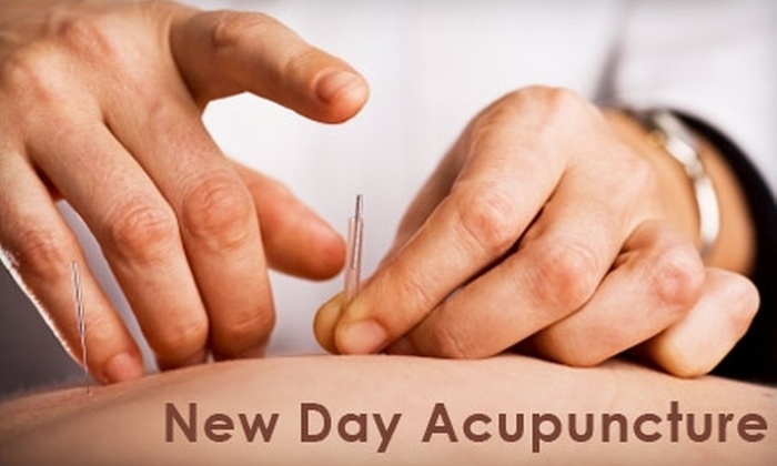 New Day Acupuncture - Stapleton: $39 for an Initial Assessment and Treatment at New Day Acupuncture ($100 Value)