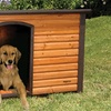K9 Lodge Large Dog House with Bonus Pad and Door