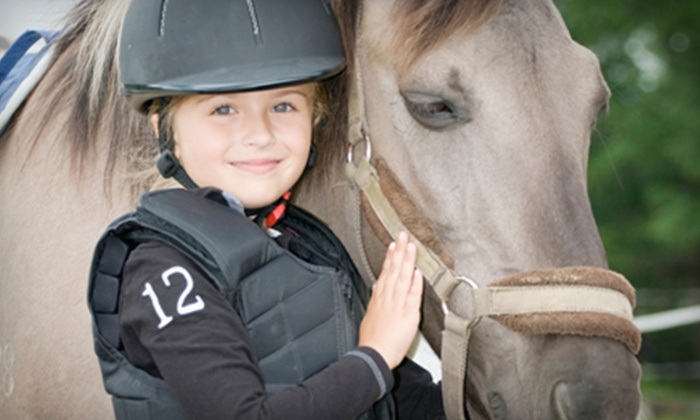 The Horse Sense Riding School - Mount Hood: One, Two, or Four Semi-Private Horseback Riding Lessons at The Horse Sense Riding School (Up to 59% Off)
