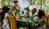 32% Off Dine-In at Rainforest Cafe