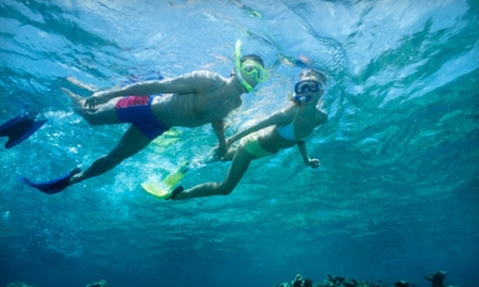 San Diego Excellent Adventures - La Jolla: $35 for Guided Snorkeling Tour, Stand-Up Paddleboard Tour, or Kayak Tour from San Diego Excellent Adventures (Up to $70 Value)