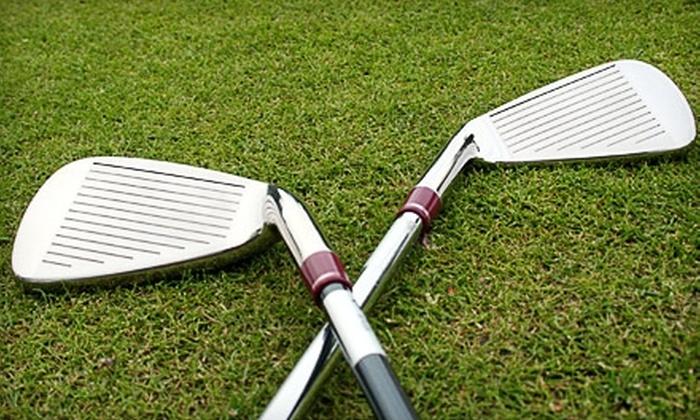 Roger Dunn Golf Shops - Santa Ana: $50 for Custom Club Fitting at Roger Dunn Golf Shops in Santa Ana ($100 Value)