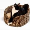 Up to 57% Off a K&H Lazy Cup Pet Bed
