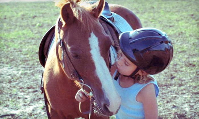 Cypress Grove Stables - Hunter Army Airfield: One Private or Two or Four Group Horseback-Riding Lessons at Cypress Grove Stables (Up to 54% Off)