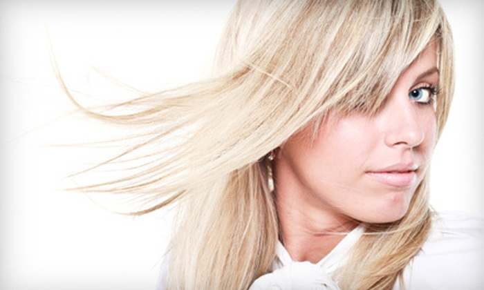 House of Blonde - Arlington Heights: Partial Highlights or Keratin Express Treatment at House of Blonde in Arlington Heights (Half Off)