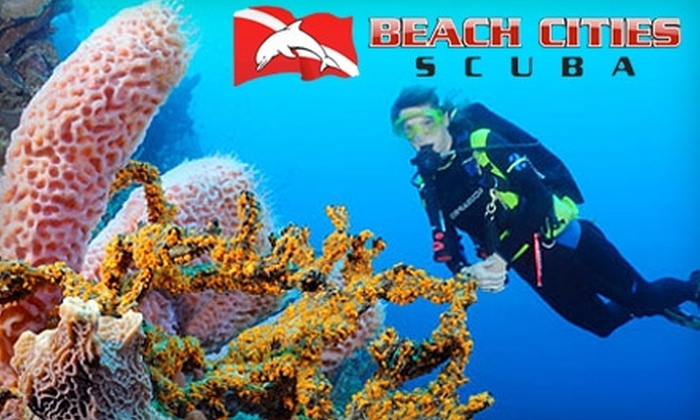 Beach Cities Scuba - Multiple Locations: $35 for a Two-Hour Discover Scuba Course at Beach Cities Scuba ($70 Value)