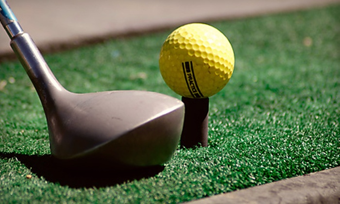 The Plex South - Fort Wayne: $10 for $20 Worth of Mini Golf and Use of Driving Range, Golf Simulator, and Batting Cages at The Plex South