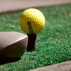 $10 for Golf and Batting Cages at The Plex South