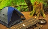 Morgan RV Resorts - Old Orchard Beach: $77 for a Two-Night Camping Excursion for Four at NASCAR RV Resort at Wild Acres in Old Orchard Beach (Up to $157.50 Value)