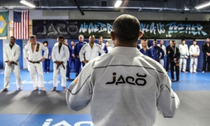 Jaco Hybrid Training Center: One- or Two-Month Gym Membership Plus Brazilian Jiu-Jitsu Classes at Jaco Hybrid Training Center (Up to 72% Off)