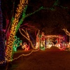 Up to 44% Off Drive-Thru Holiday-Light Park
