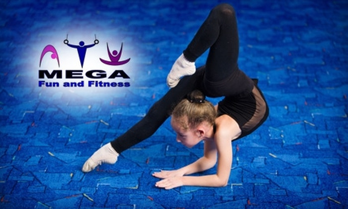 MEGA Fun and Fitness - Novi: $25 for Four Gymnastics Classes at MEGA Fun and Fitness (Up to $86 Value)