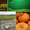 Half Off Corn Maze and More in Snohomish