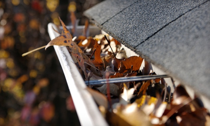 Mr. Fixit, Inc. - San Rafael: $99 for Gutter Cleaning from Mr. Fixit, Inc. ($269 Value)