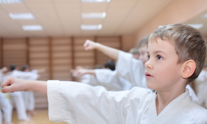 Robinson's Taekwondo - Multiple Locations: One, Two, or Three Months of Unlimited Martial-Arts Classes with a T-Shirt at Robinson's Taekwondo (Up to 85% Off)