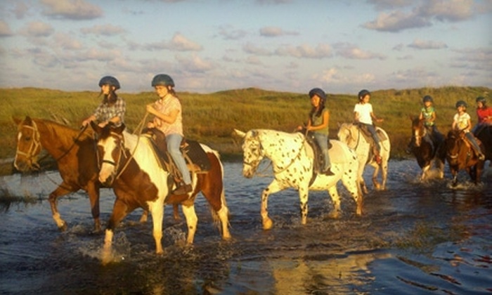Horses on the Beach - Flour Bluff: $35 for a Two-Hour Sunset Ride at Horses on the Beach ($70 Value)