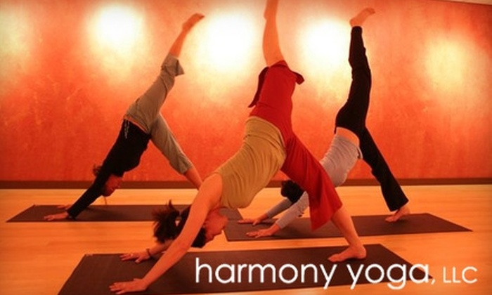 Harmony Yoga - Washington Virginia Vale: $49 for 30 Days of Unlimited Yoga and Nia Classes at Harmony Yoga ($95 Value)