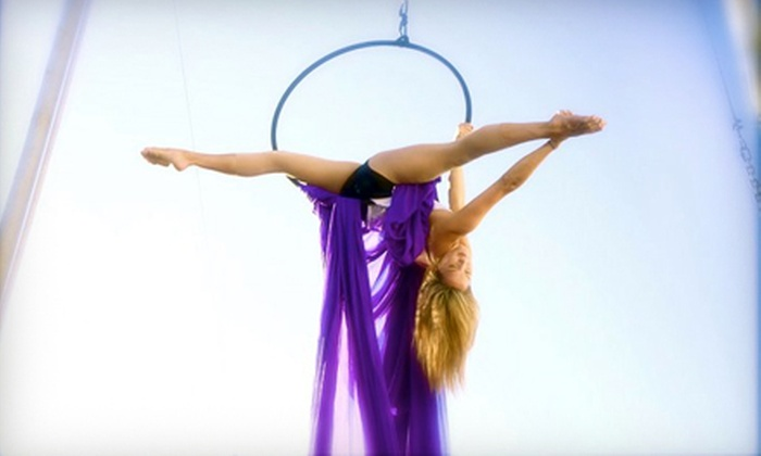 Trapeze School New York, Aerial Studio 1 - Santa Monica: Silks, Static-Trapeze, or Lyra Class for One, Two, or Four at Trapeze School New York in Santa Monica (Up to 61% Off)