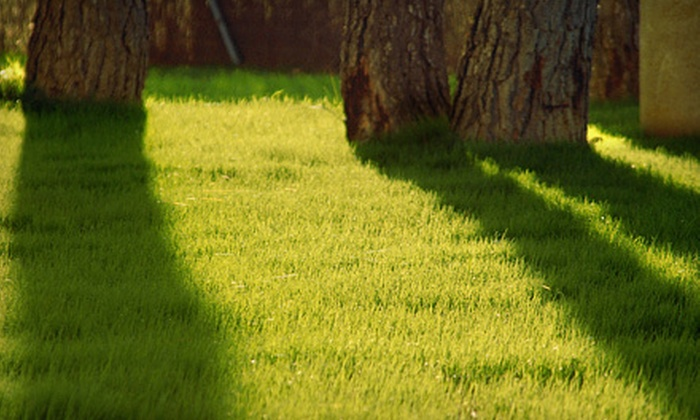 Remy Landscaping - Bethesda: $59 for a Lawn-Aeration Service from Remy Landscaping ($140 Value)