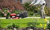 First Choice Lawn Care - Downtown Riverfront: Two Lawn Cuts or Lawn Fertilization and Lawn Cut from First Choice Lawn Care