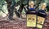 Ojai Olive Oil and Olive Farm - Hillsides: $19 for an Olive-Oil Package and Olive-Farm Tour at Ojai Olive Oil ($50 Value)