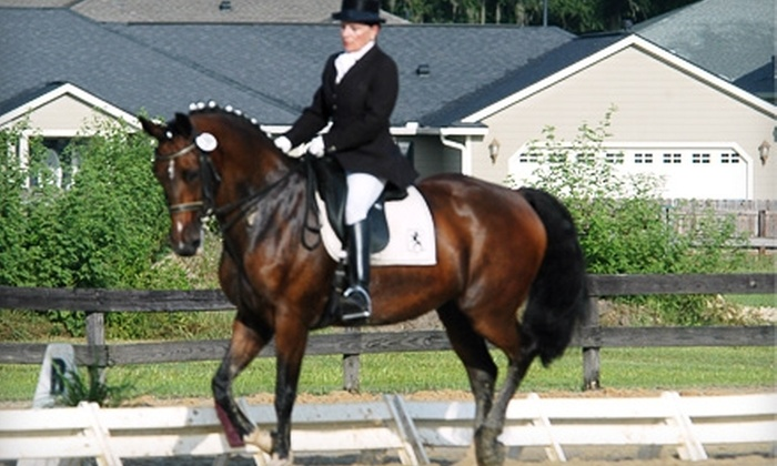 Sonora Creek - Canton: One Dressage Lesson or an Introductory Dressage Course at Sonora Creek Farms in Canton