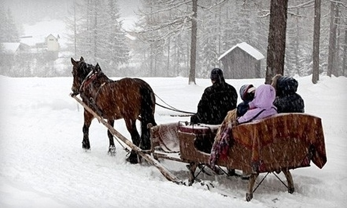 Cornerstone Ranch - Princeton: Sleigh- or Carriage-Ride Outing with Hot Cocoa for Two or Four from Cornerstone Ranch in Princeton (Up to 56% Off)