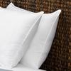 Le' Nautique Collection Queen Size Gel Fiber Filled Pillows (2-Pack)