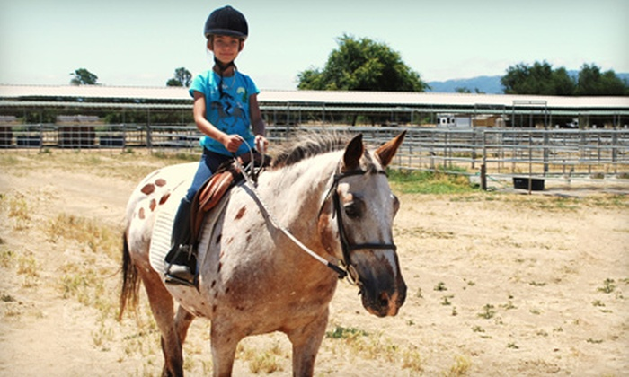 Jeanette Arnaout Training - Gilroy: $22 for a One-Hour Group Horseback-Riding Lesson from Jeanette Arnaout Training in Gilroy ($45 Value)