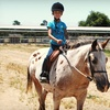 51% Off Horseback-Riding Lesson in Gilroy