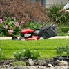 Half Off Lawn-Mowing Services
