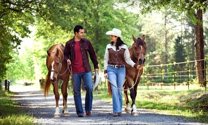 Miracle Hills Ranch & Stables - Fort Calhoun: One-Hour Horseback-Riding Lesson for One or Two at Miracle Hills Ranch & Stables in Fort Calhoun