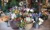 Preferred Plants - East Avenue: $25 for $50 Worth of Artificial Botanicals and Home Décor at Preferred Plants