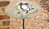 NHL Glass Birdbath with Metal Stake Set: NHL Glass Birdbath with Metal Stake Set