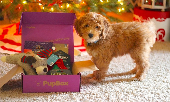 PupBox: One or Three Months of Puppy Toys, Treats and Training Info Delivered from PupBox (Up to 31% Off)