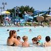 50% Off Visit to Sea Lion Aquatic Park