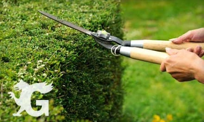 Griffin Company - Boise: $60 for a Four-Hour Yard or Garden Cleanup ($120 Value) or $20 for Sprinkler Winterization ($40 Value) from Griffin Company