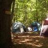 Half Off Tent-Campsite Rental at Rose's Retreat