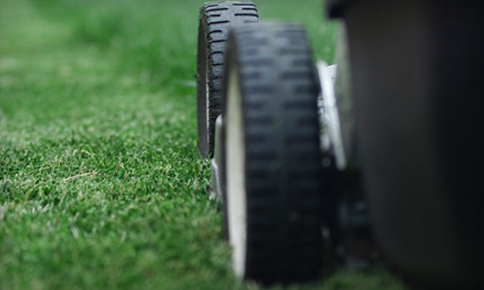 Southern Style Lawn Care - Mobile / Baldwin County: $20 For Lawn Care Package from Southern Style Lawn Care ($45 Value)