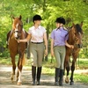 58% Off Horse-Riding Lesson