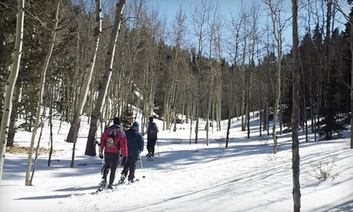 First Ascent Mountain School - Ivywild: Half-Day Guided Snowshoeing Trip for Two or Four from First Ascent Mountain School (Up to 51% Off)