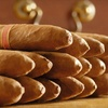 Half Off at Hoboken Premium Cigars