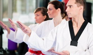 Mountain Taekwondo: $40 for $160 Worth of Martial-Arts Lessons — Mountain Taekwondo
