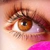 Up to 60% Off Eyelash Extensions at Lash Cosmo