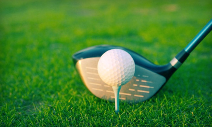 Jim Fenner Golf Professional - The Auburn Driving Range: Two or Four Private, 30-Minute Lessons from Jim Fenner Golf Professional (Up to 56% Off)