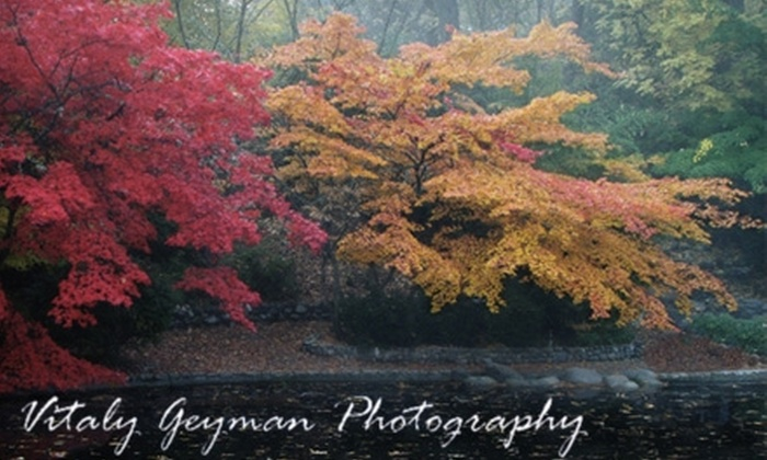 "Vitaly Geyman Photography: $49 for Two 8""x12"" Photographic Prints from Vitaly Geyman Photography ($200 Value)"